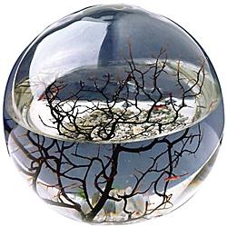 Ecosphere Nasa �kosystem - 23 cm